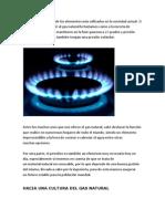 El gas natural es uno de los elementos más utilizados en la sociedad actual