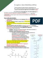 28.11.11 Pomeriggio - Biosintesi Dei Lipidi Complessi e Inizio Metabolismo Dell'Eme