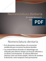 Nomenclatura dentaria