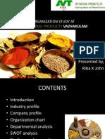 AVT Presentation1