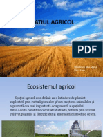 SPATIUL AGRICOL