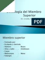 OsteologiaMSuperior