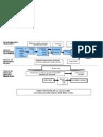 Anexa 1 Harta proceselor