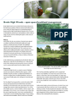 Brede High Woods - Open Space/Heathland Management