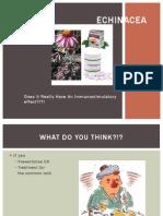 Echinacea ppt1