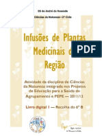 Livro Digital I
