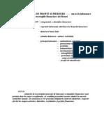 Audit III c Suport Curs 12.02.2007