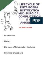 Lifecycle of Entamoeba