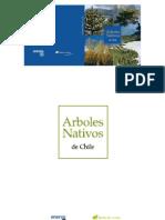 arboles_nativos1