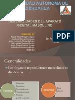 General Ida Des de Aparato Masculino