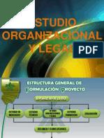 Estudio Organizacional y Legal Fpunisangil