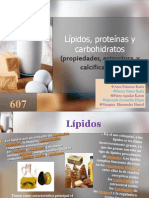 Lípidos, proteínas y carbohidratos