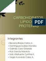 CARBOHIDRATOS, LÍPIDOS Y PROTEÍNAS
