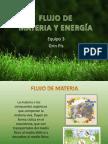 FLUJO, MATERIA Y ENERGÍA (1)