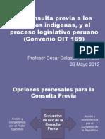 CDG - Proceso Legislativo y Consulta Previa (Perú, 2012)
