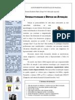 artigo-jornal-piropo