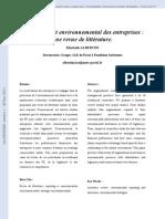 L'engagement environnemental des entreprises - une revue de littérature