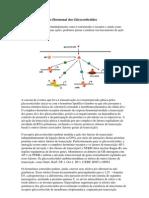 Mecanismos de Ação Hormonal dos Glicocorticóides