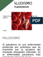 Isaac Paludismo