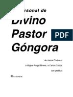 divinopastor