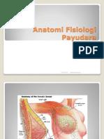 Anatomi Fisiologi Payudara