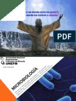 Microbiologia Bacterias