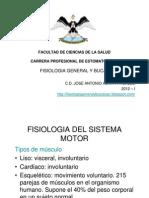 2° FISIOLOGIA MUSCULAR