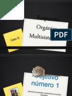 Respuesta Orgánica Multisistémica Grupo 11