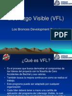 Liderazgo Visible (VFL)