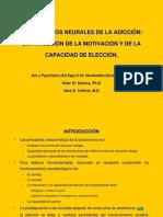 Adiccion Fundamentos Neurales 07-09 M6 Recaida