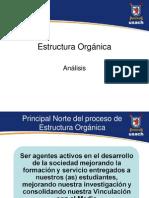 Presentacion Analisis Estructura Organica