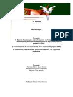 Caracterizacion Del Virus Del Mozaico Amarillo,Hongo Colletotrichum y Lactobacilos