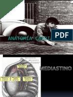 Anatomia Cardiaca Final