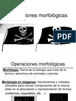 imagenmorfologicas-1211279653833922-8