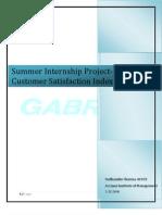Summer Internship Project-Sudhanshu Sharma(PGDM 2009-11,40103)