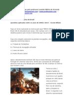 Questões Descobrimento do Brasil-por-leandro-villela-de-azevedo