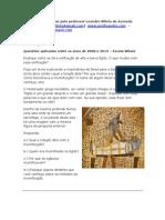 Questões Egito-por-leandro-villela-de-azevedo