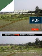 Teknologi Produksi Benih 2012