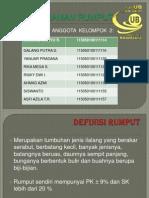 Tugas Presentasi ITPT Kel 2, Tentang Jenis2 Rumput.