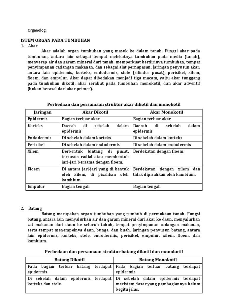 Perbedaan Dan Persamaan Struktur Jaringan Batang Monokotil Dan Dikotil