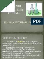 TEHNICA EFECT. frotiu