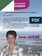 Questionnaire Tania André pour les élections législatives 2012