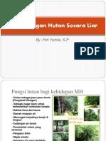 Penebangan Hutan Secara Liar 1