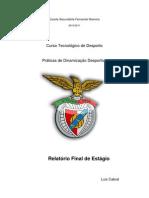 Luís Cabral - Relatrio Final de Estagio