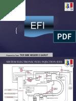 sistem_efi