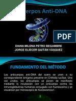 Anticuerpos Anti DNA