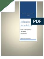 Antologia de Metodos Numericos
