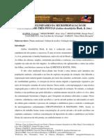 DADOS PRELIMINARES DA MICROPROPAGAÇÃO DE CANCOROSA-DE-TRÊS-PONTAS (Jodina rhombifolia Hook. & Arn.)