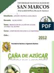 PRODUCCION DE LA CAÑA DE AZUCAR