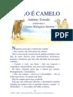 01.18 - Não é camelo
